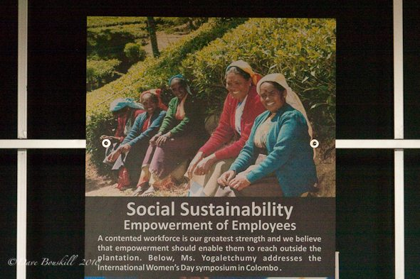 Claims of Social Resonsability by tea estates