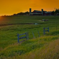 Mennonite-farming-ontario-sunset