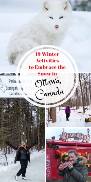Ottawa Attractions Winter Pin