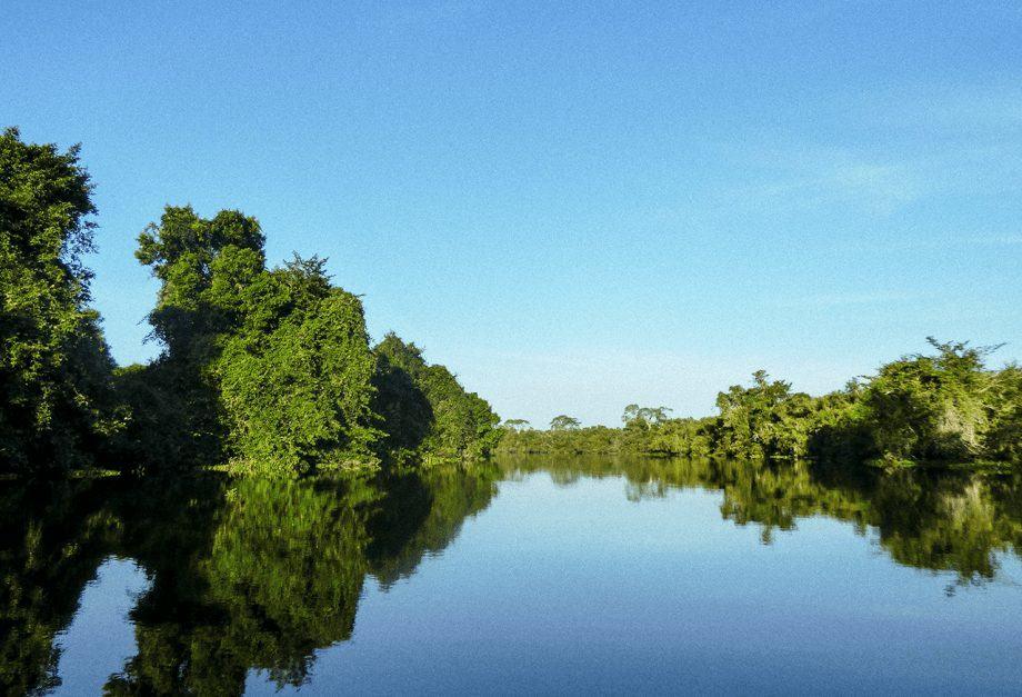 Paddling through the Pantanal in Brazil