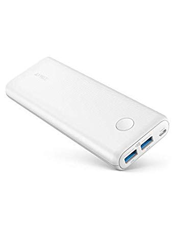 best gadgets for travel | power bank