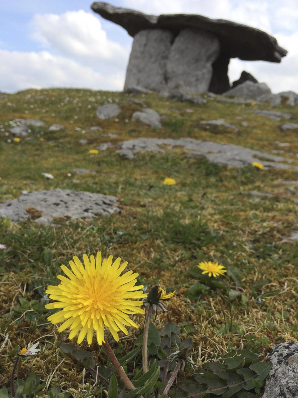 Poulnabrone Dolmen Tourist site