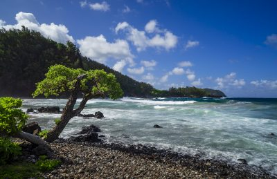 road to hana stops