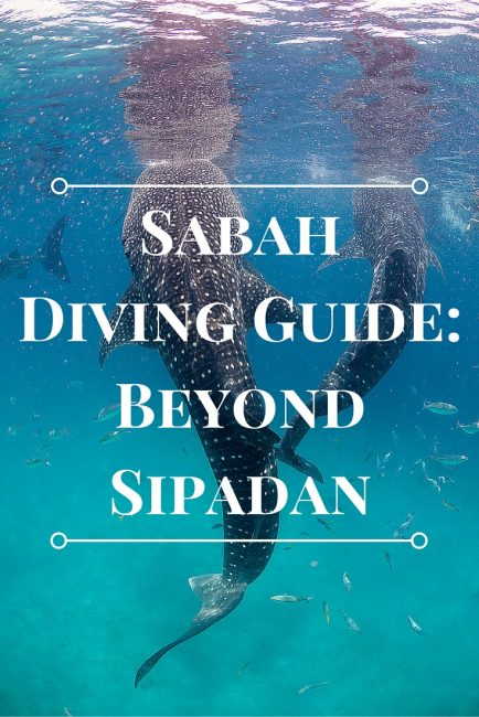 Sabah Diving Guide Beyond Sipadan
