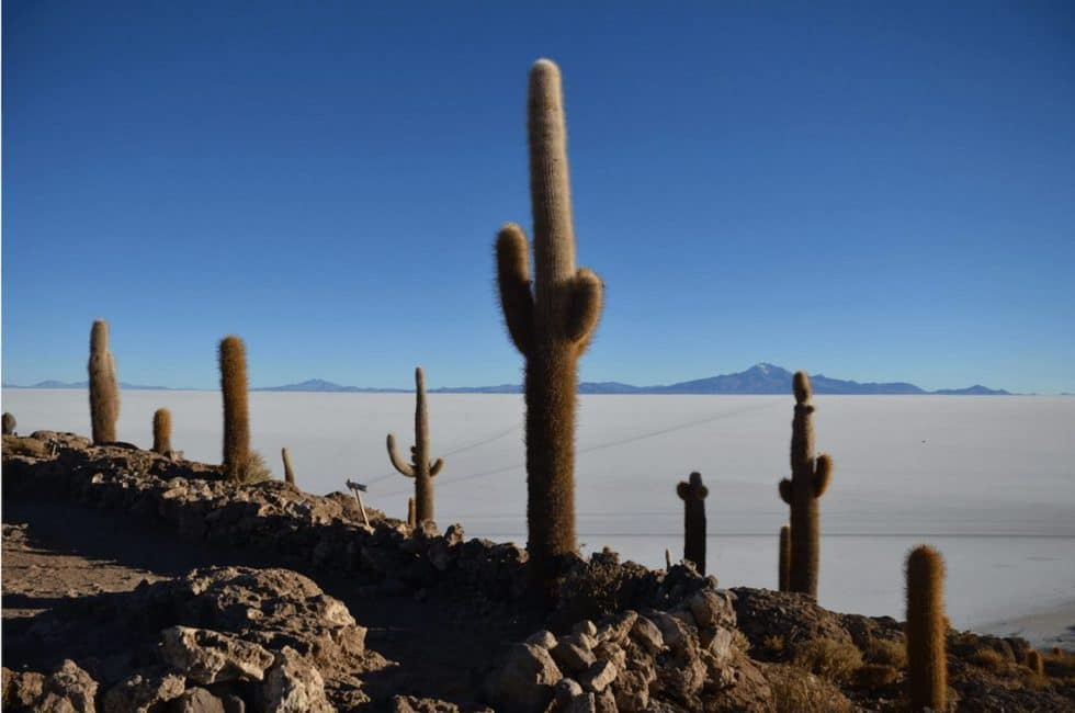 Salar de Uyuni - 5 Useful Tip to Help Your Trip | The Planet D
