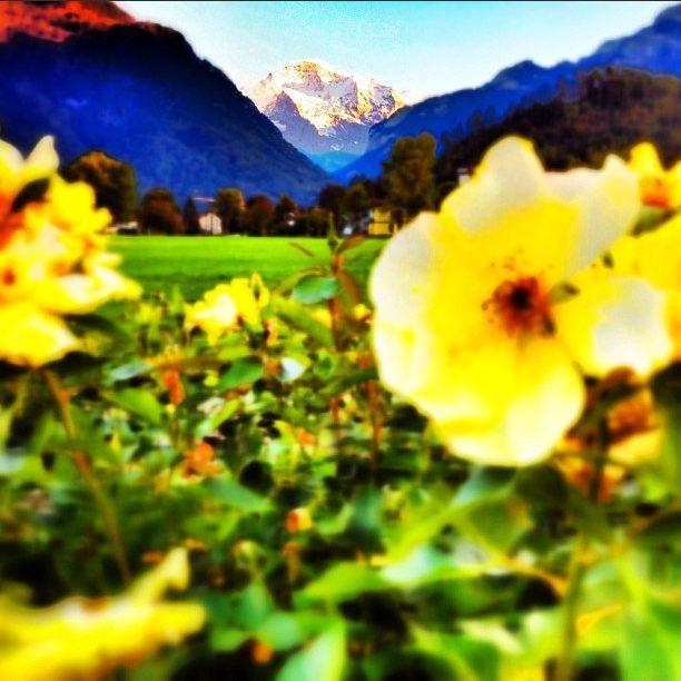 photo overlooking Interlaken Valley