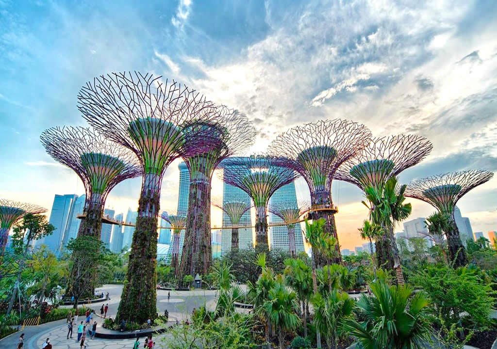Super Tree Structures in Singapore tour itinerary