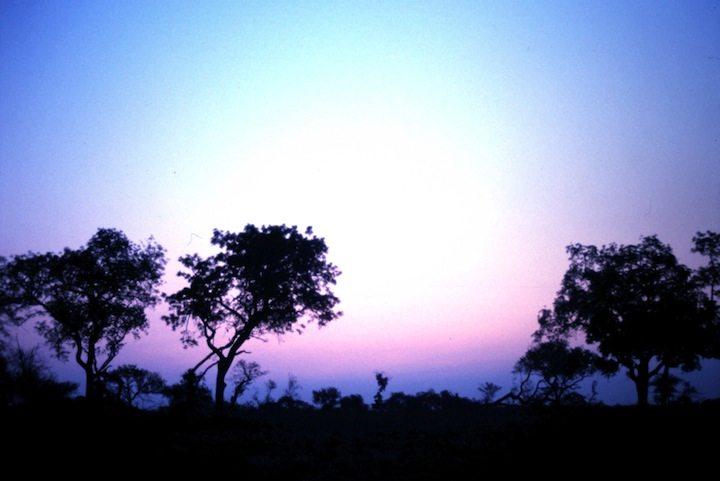 South African Sun Set