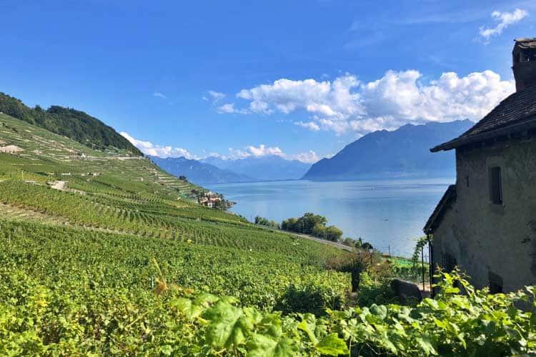 switzerland itinerary lavaux vineyards