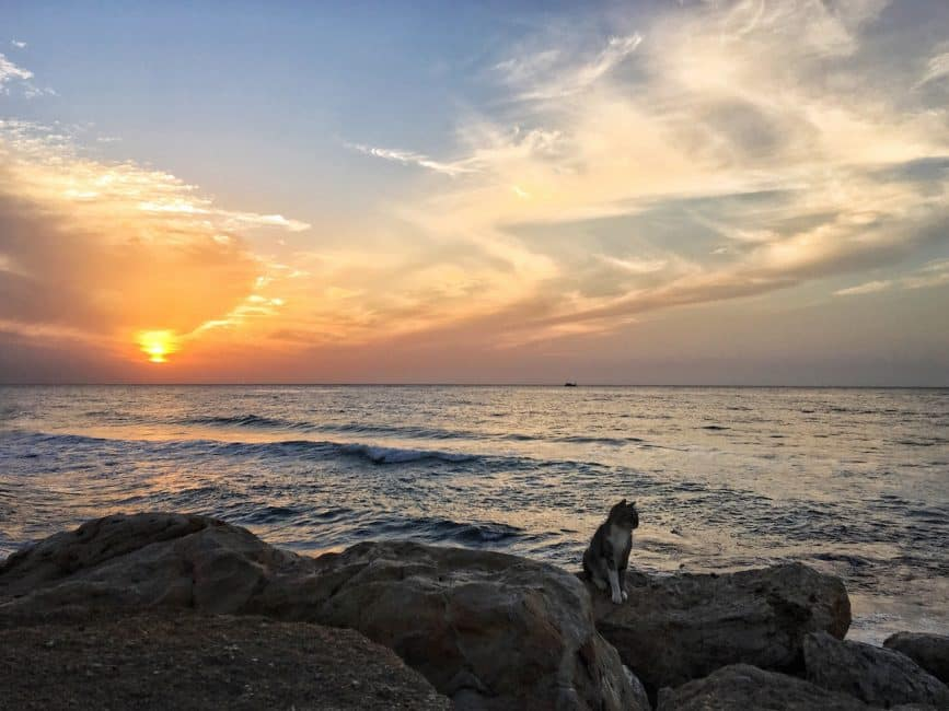 Tel Aviv Attractions, the coast