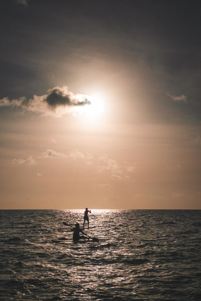 sup stand up paddleboarding at sunet in florida keys