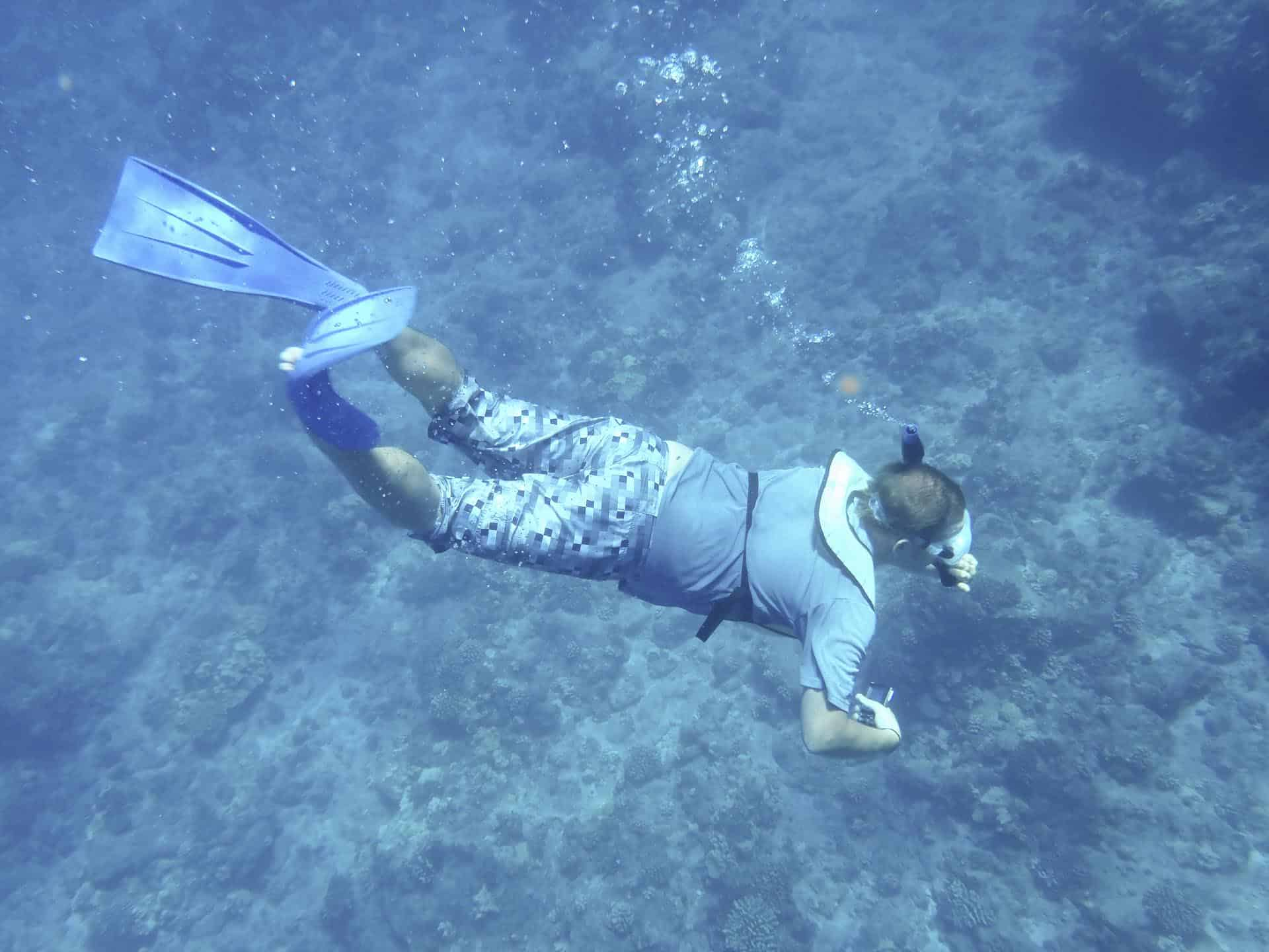 lanai things to do - snorkeling