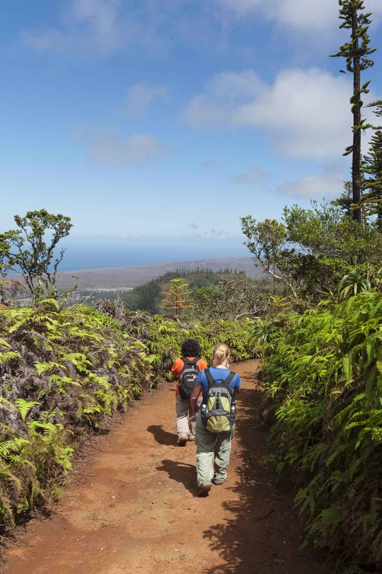hiking in lanai