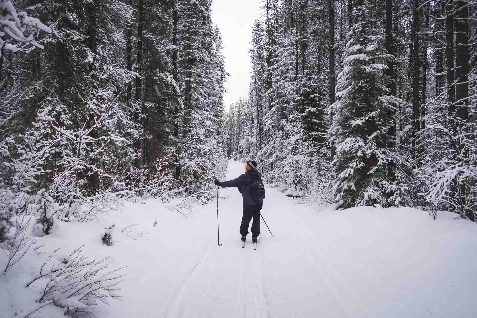 cross country skiing alberta