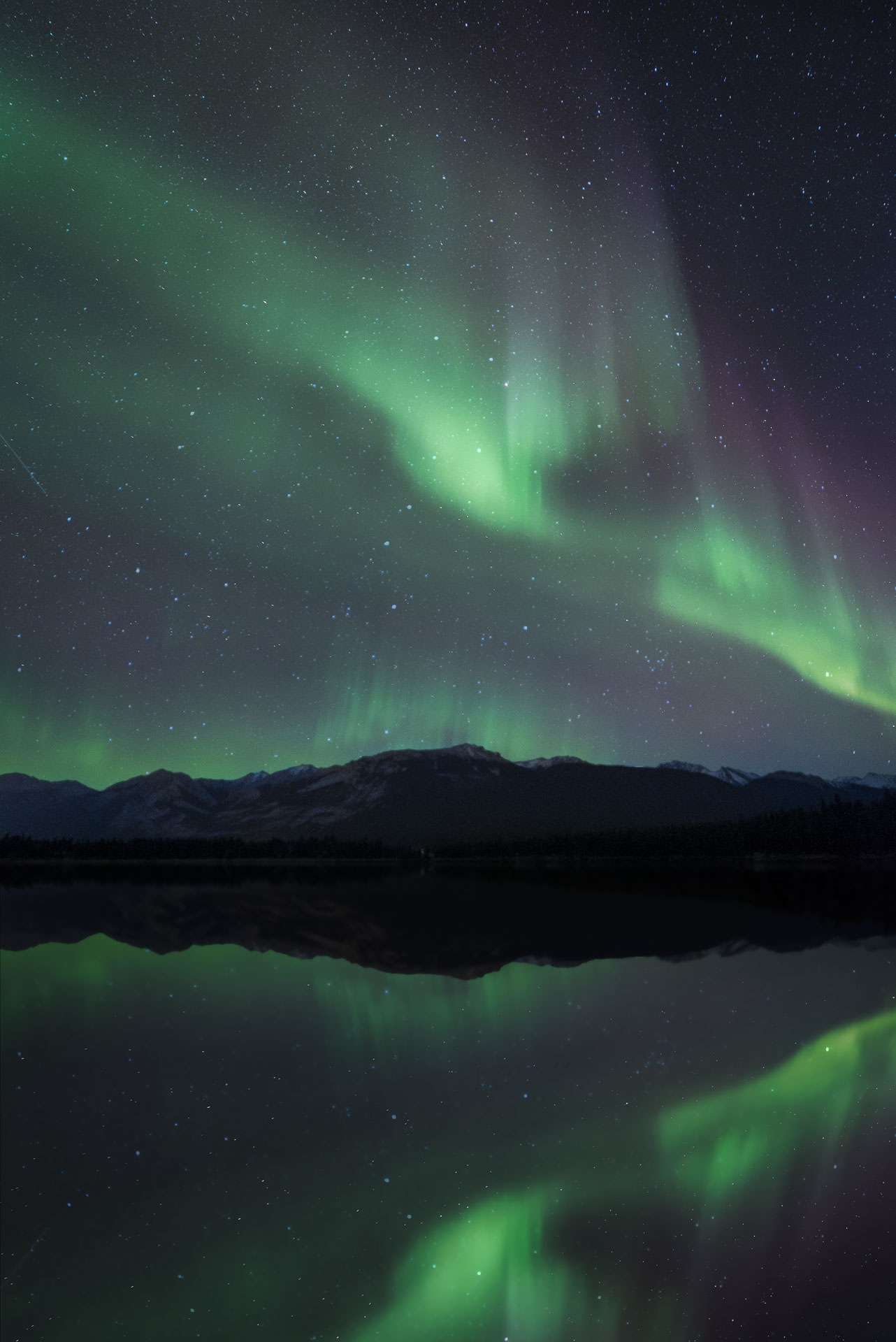 jasper dark sky festival northern lights