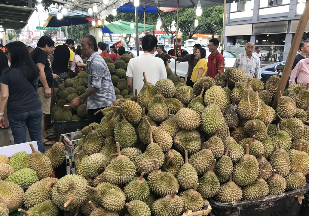 singapore must see markets durian