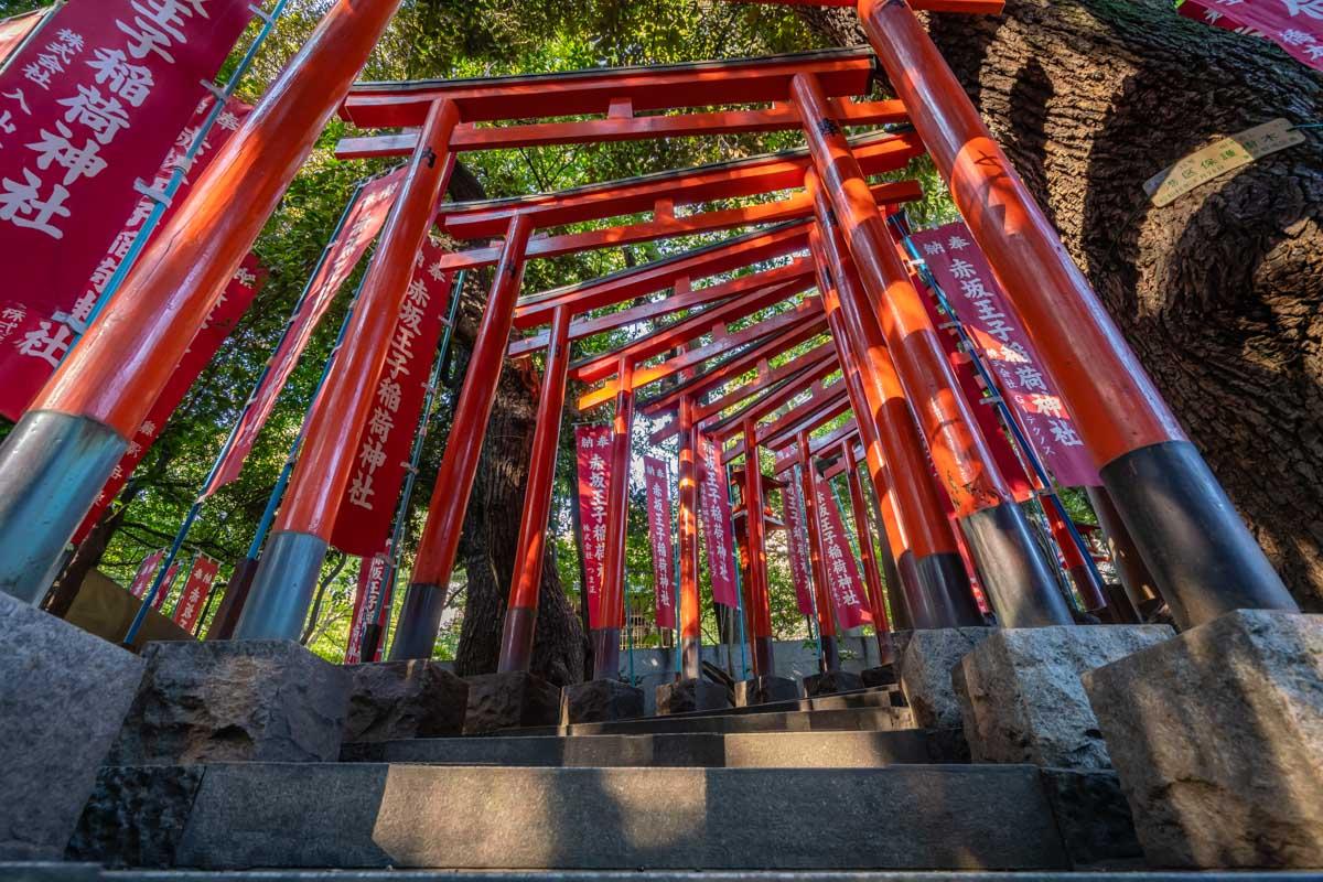 Nogi Shrine Gates in Tokyo