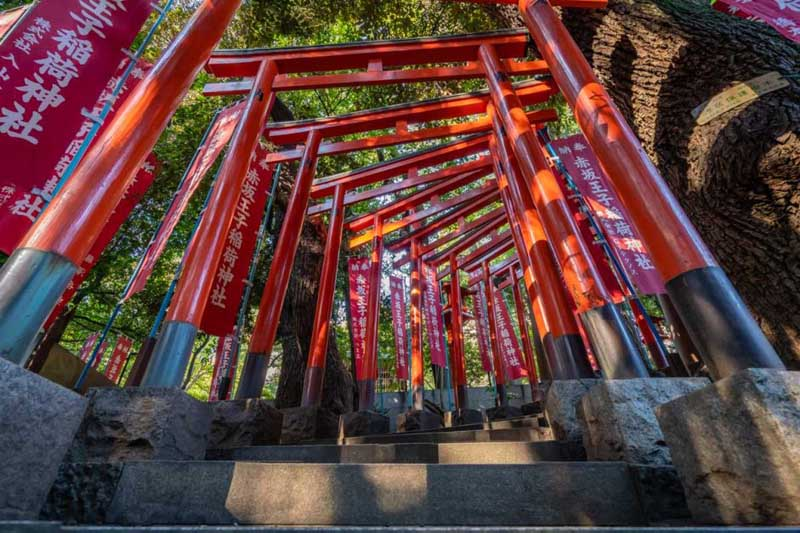 Best things to do in Tokyo | Nogi Shrine Gates