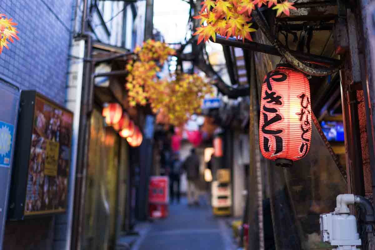 Izakaya Alleys Things to do in Tokyo