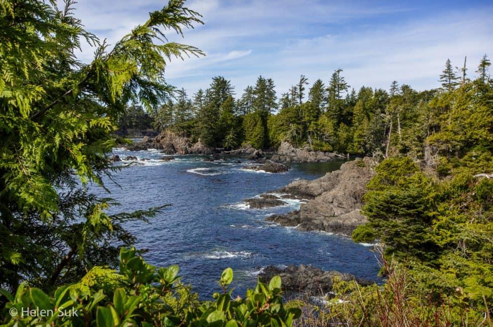 tofino wild pacific trail