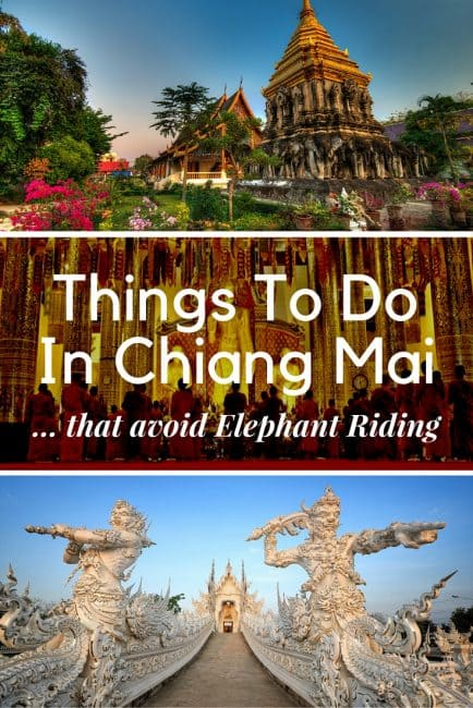 Unique Chiang Mai Attractions That Avoid Elephant Riding