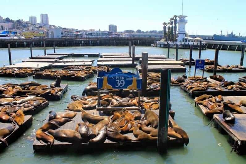 Where to stay in san francisco pier 39