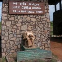 YalaNP-Sri-Lanka-5.jpg