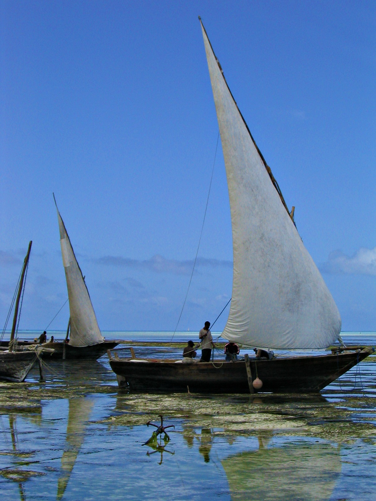 travel inspirations sail boats
