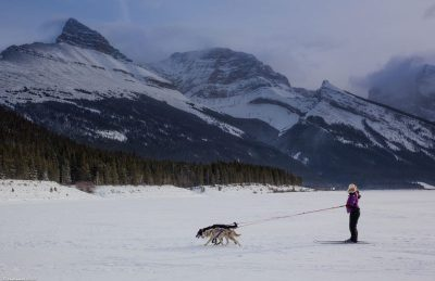 about skijoring trail