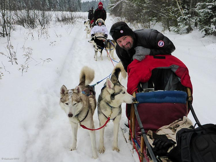 canada winter activities | dogsledding