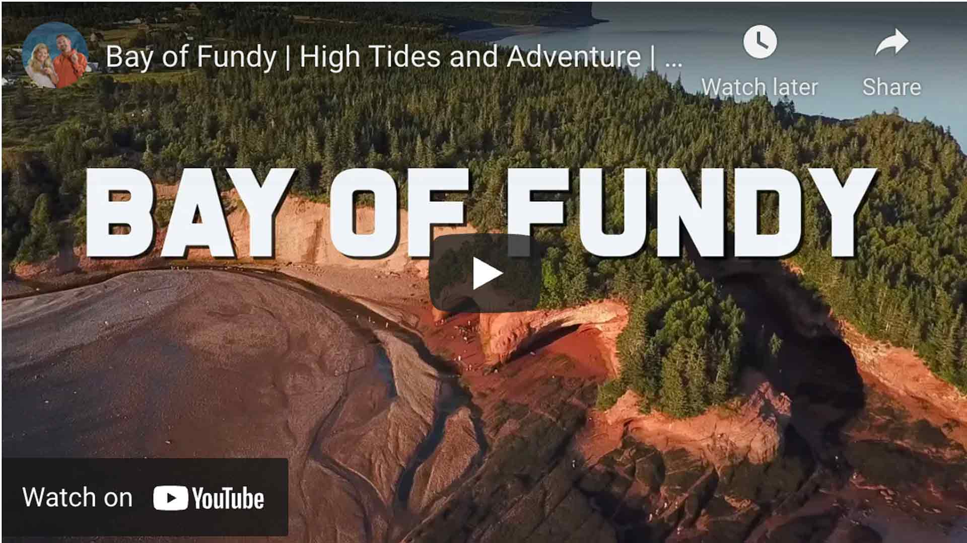 adventures on the bay of fundy video