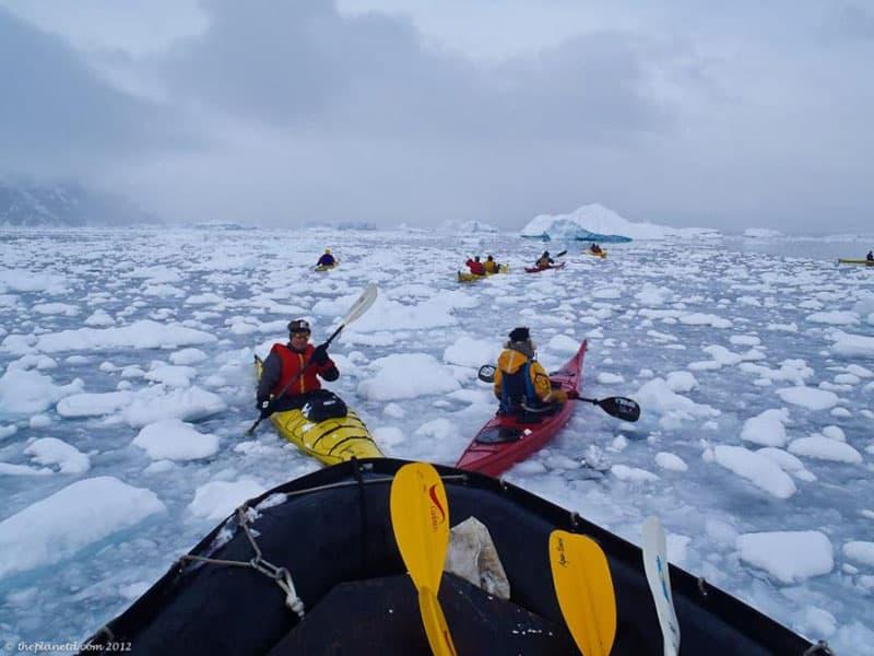amazing adventures antarctica