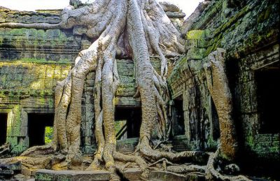 tips to visit angkor wat ta phrom temple