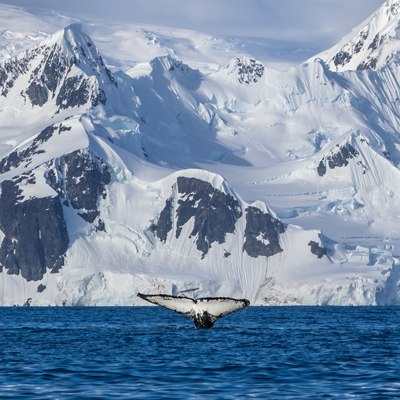 sea kayak antarctica