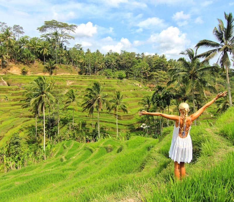 budget bali travel rice terraces