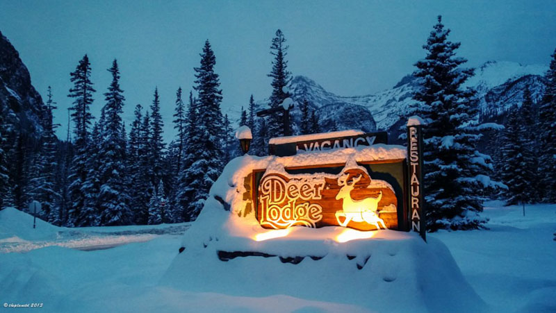 deer lodge banff