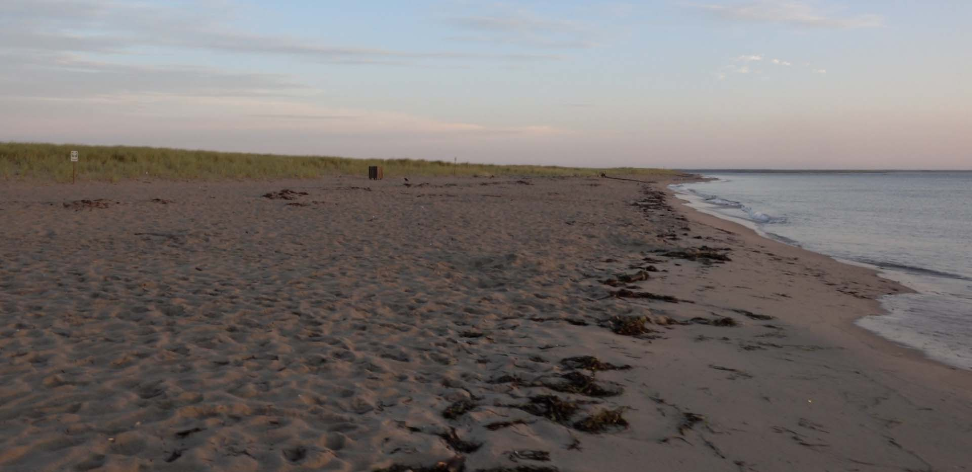 beach in prince edward island