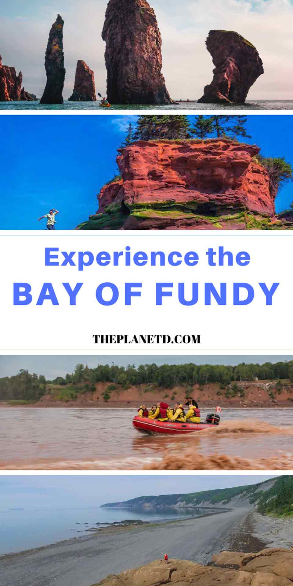 best bay of fundy adventures