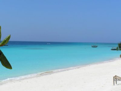 Discover The Best Beaches in Zanzibar