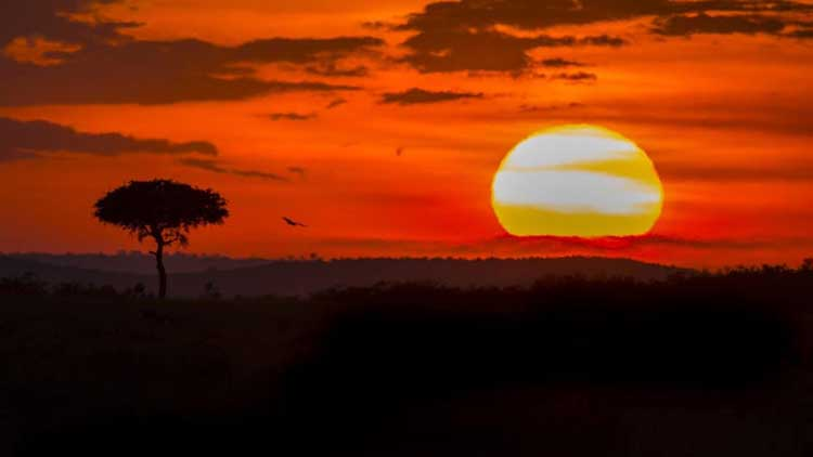 africa sunsets are the most beautiful in the world