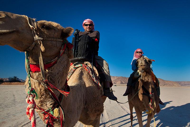 deb dave camels