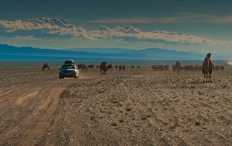 roadtrips round the world mongol rally