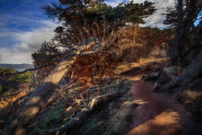 big sur photography guide trail
