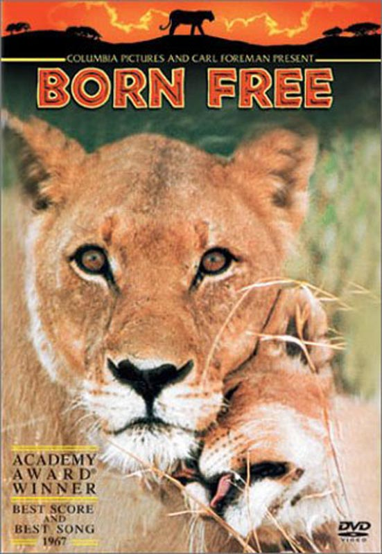 born free movie poster