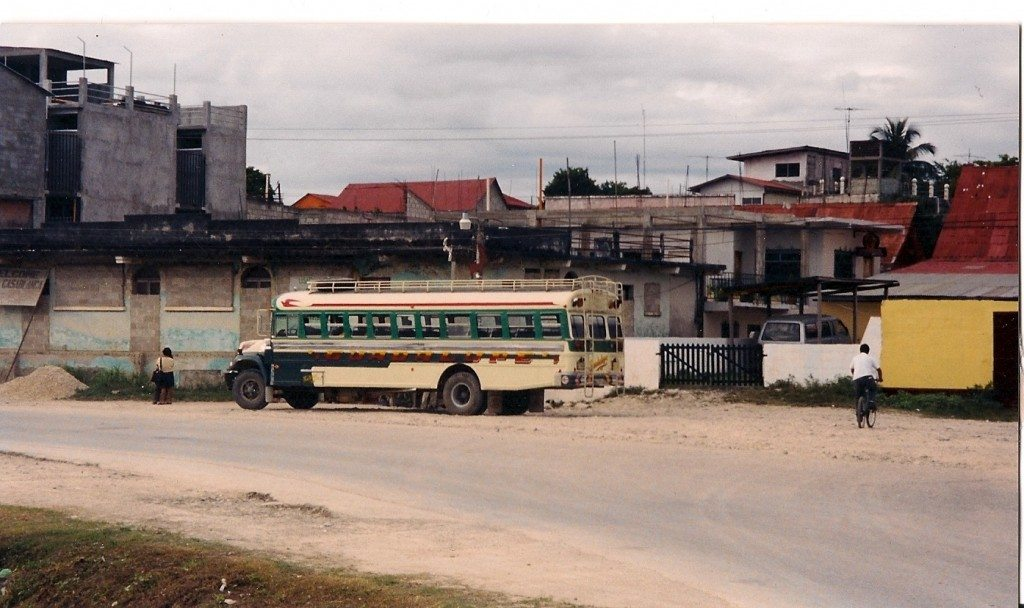 A typical bus, comfy eh?