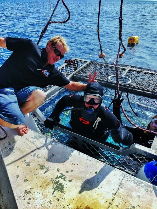 cage diving great white sharks in Australia - Dave