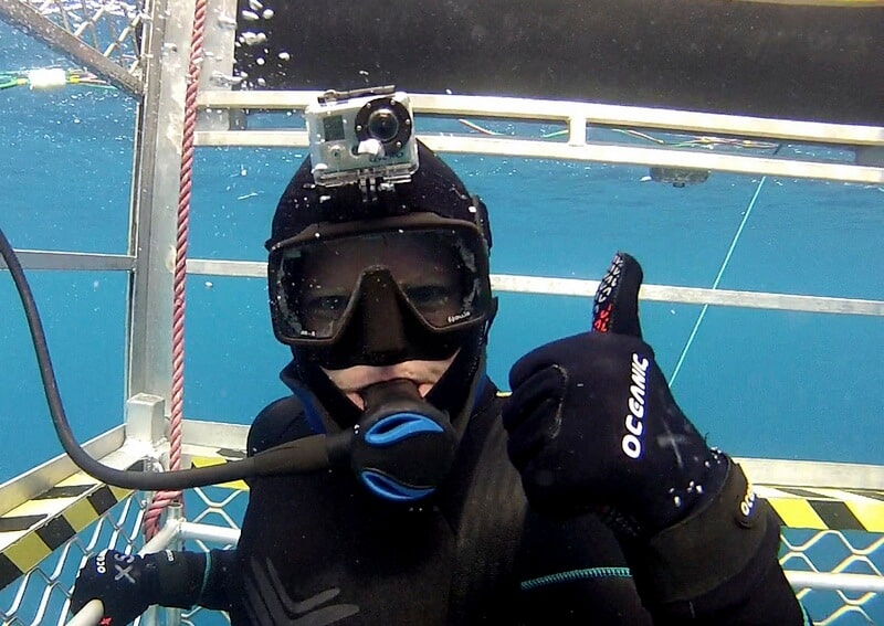 great white shark cage diving adventure - Deb