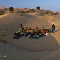 camel-safari-camp-rajasthan.jpg