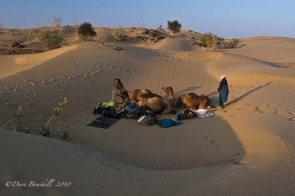 Camel Safari Adventure, Not so Mystical in Rajasthan