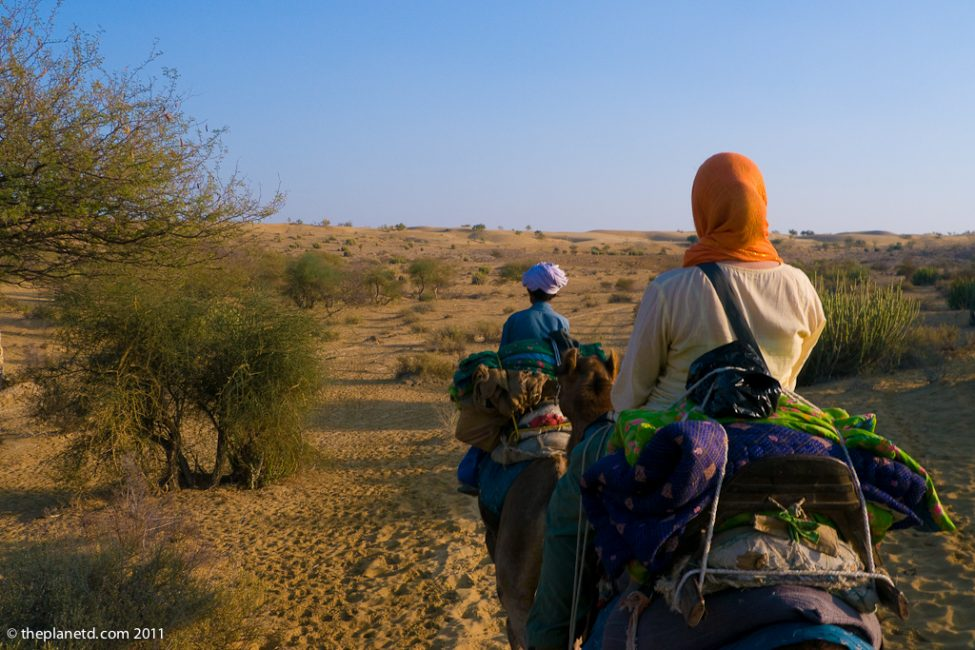 camel-safari-india-2